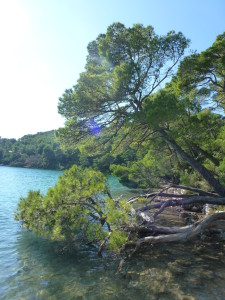 Vereinsreise_Kroatien 034